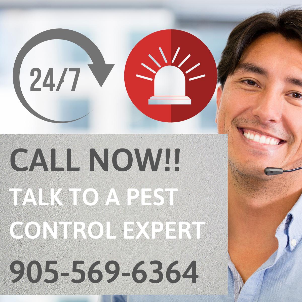 Orbis Pest Control Emergency Services