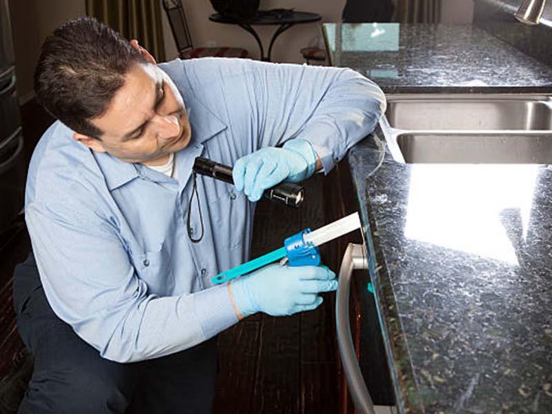 Orbis pest control technician